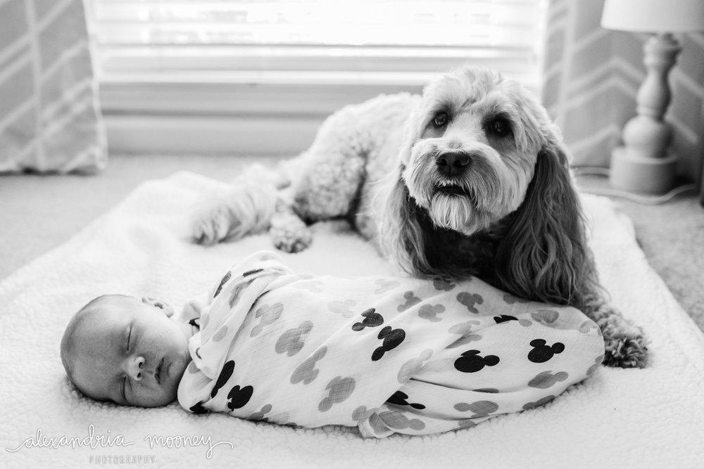 Oliver_newborn_WATERMARKED-13.jpg