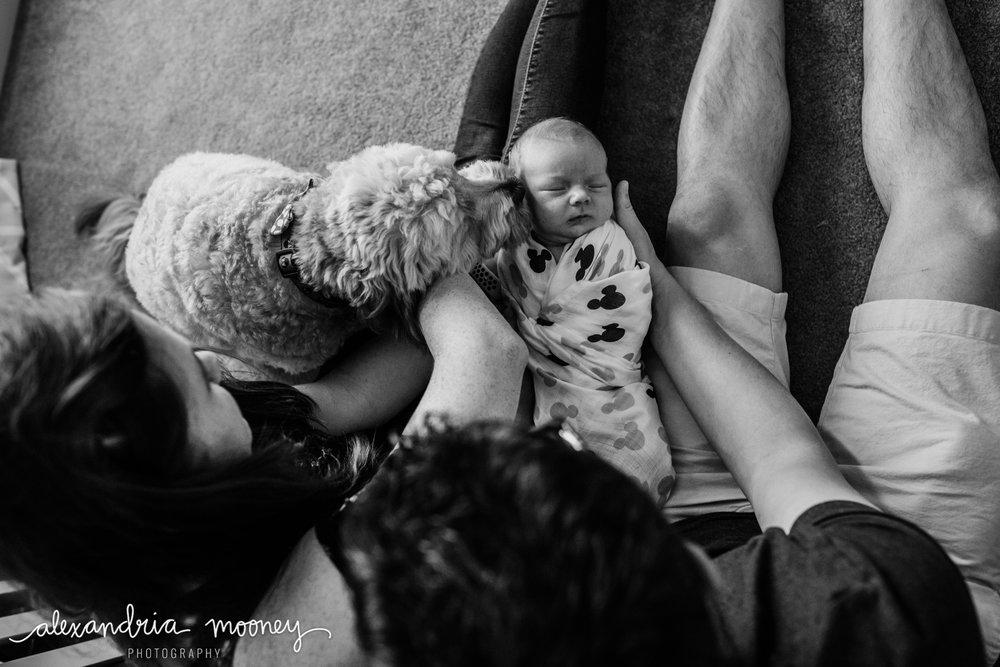 Oliver_newborn_WATERMARKED-34.jpg
