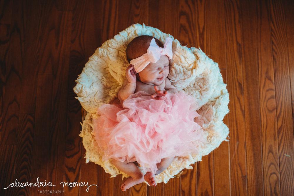 Eleanor_Newborn_WATERMARKED-8.jpg