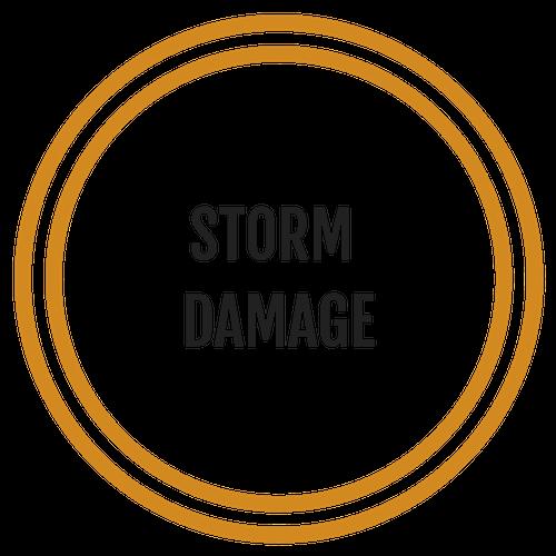 Storm Damage.png