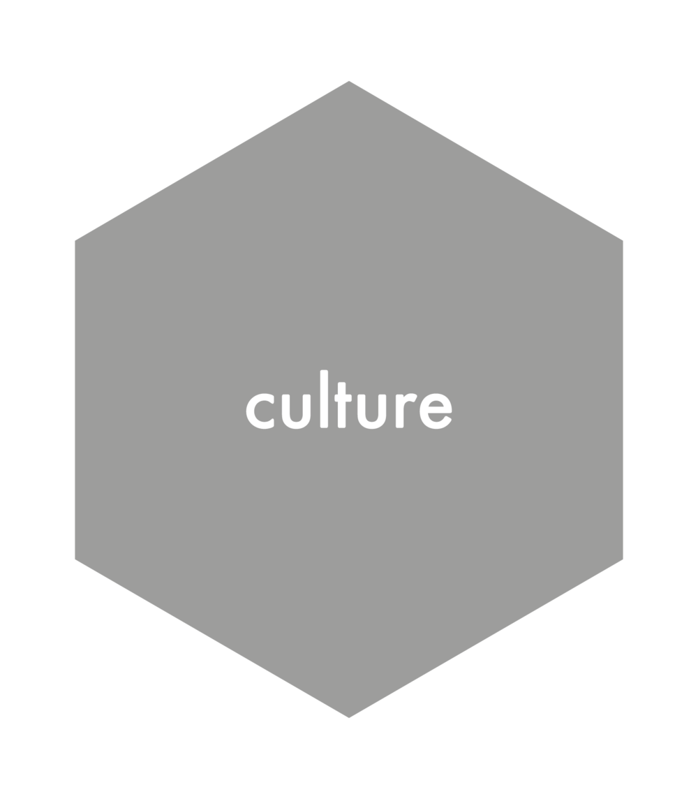 Grey hex-culture-background.png
