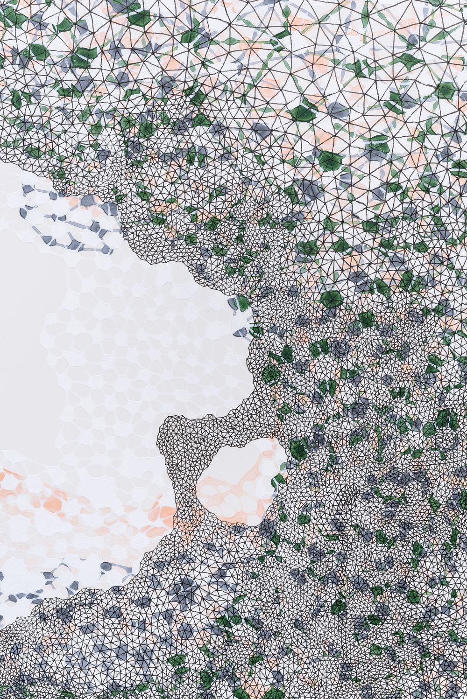 Fragmented Fields (Detail)