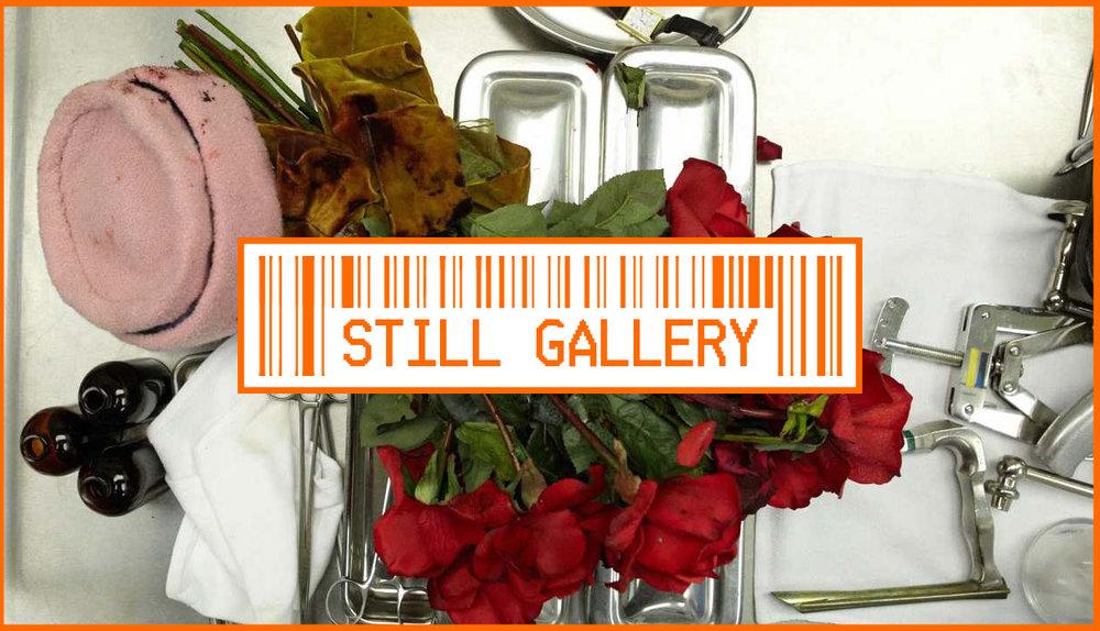 Still Gallery.jpg