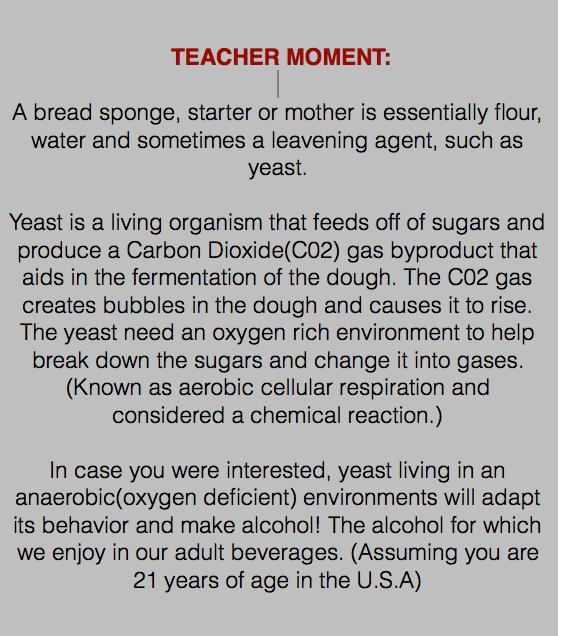 teacher-moment.png