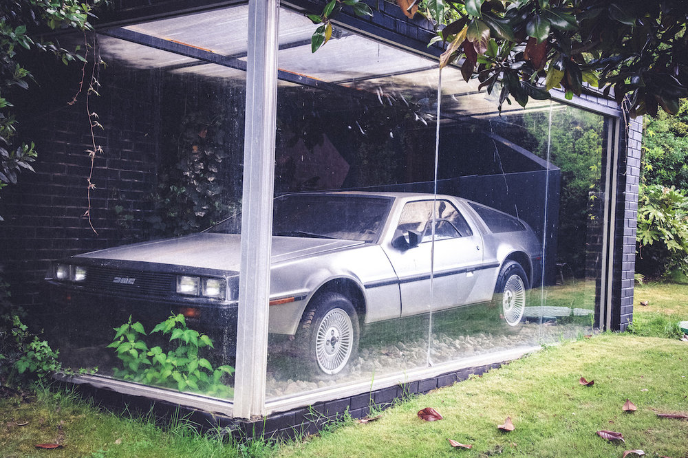GARDEN DELOREAN__3.JPG