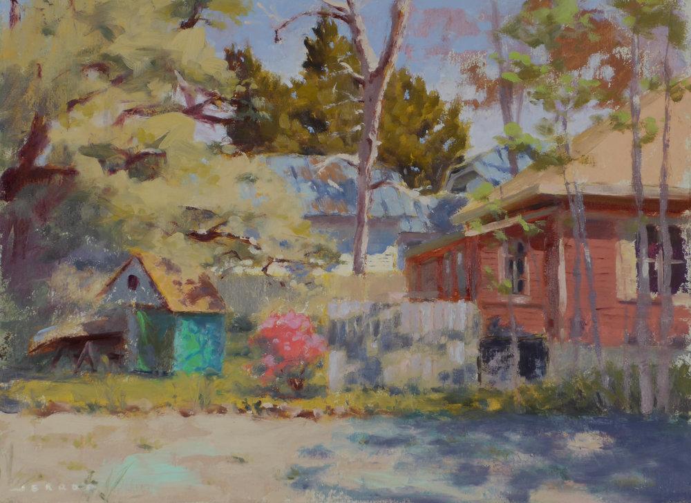 Backyard with Azaleas.JPG