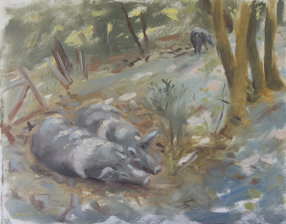 Cinta Senese pigs oil copy.jpg