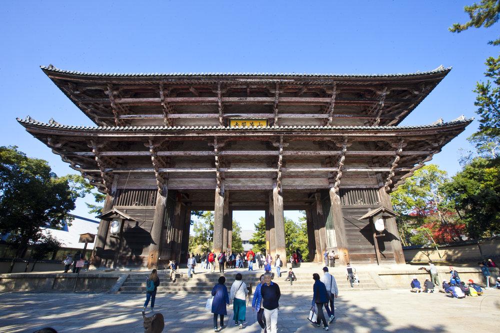 nara shrine2.jpg