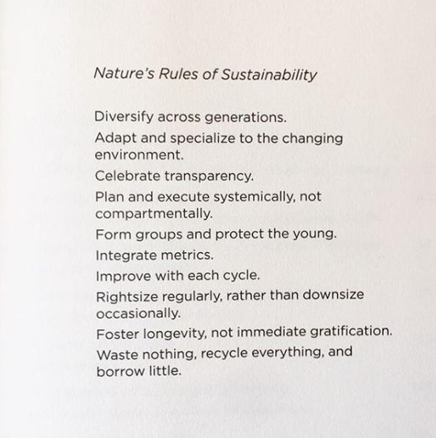 ☉ The opening page of Strategy for Sustainability: A Business Manifesto by Adam Werbach ☉    #423stfrancis #chattanooga #womensapparel #mensapparel #boutiquestyle #clothing #styleisafeeling #realbodies #womenswear #fashion #fashioforall #shoplocal #nooga #onlineshopping #fashionsale #noogasale #noogagram #chattanooga #nooga #chatt #chattanoogaphotographer #chattanooga_fun #chattanoogamarket #chattanoogashopping #chattanoogastyle #chattanoogafashion #chattanoogablogger