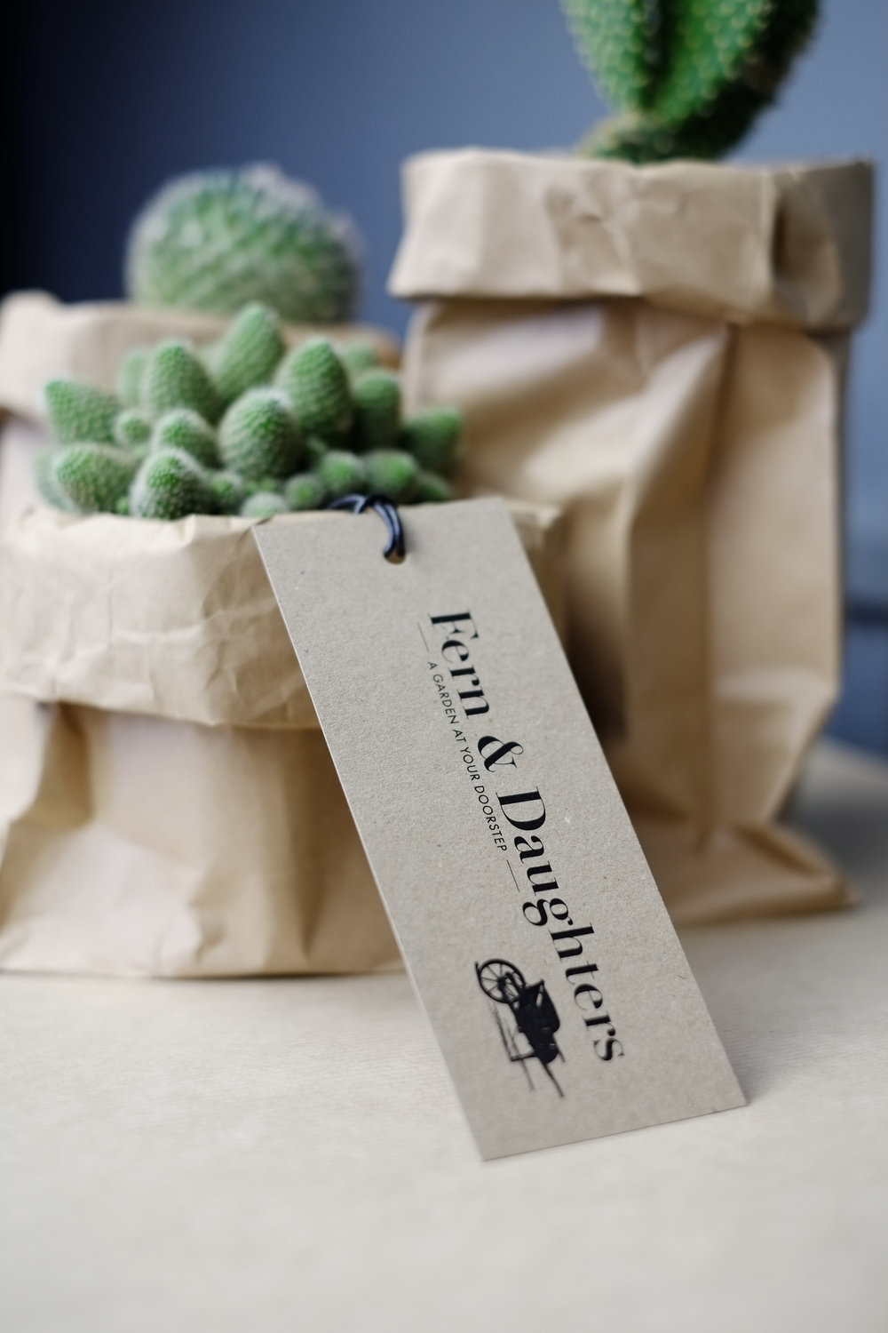 FERN AND DAUGHTERS, WEB SHOP, TAGS, BUSINESS CARD AND STATIONERY.