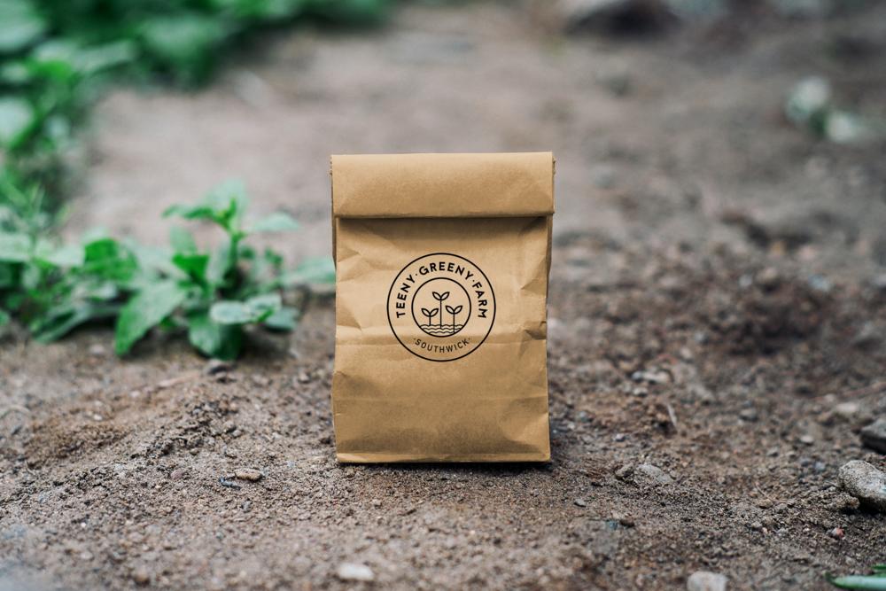 Teeny_greeny_Kraft Paper Bag Mockup.png