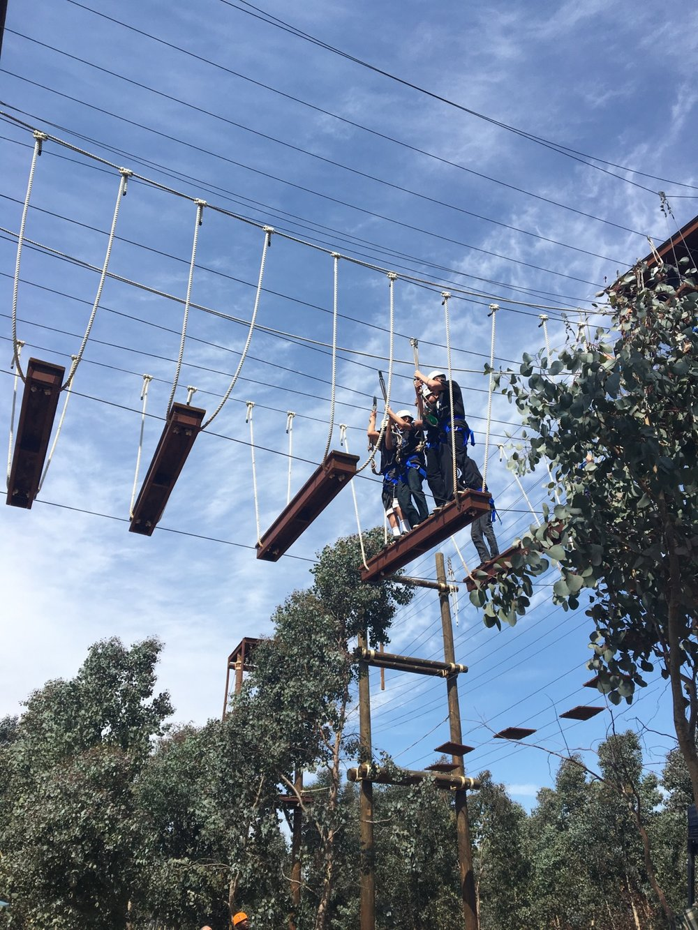 High School FIT ropes course 2.jpg