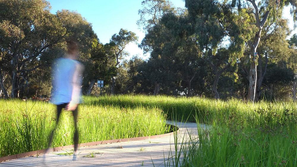 05-Oaklands Park and Wetland-Alex Lock MASTER.jpg