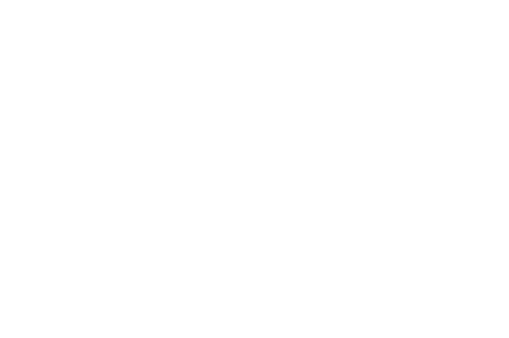 DEBUT FILM OUTSTANDING ACHIEVEMENT AWARD - Cult Critic Movie Awards - 2018 (1).png