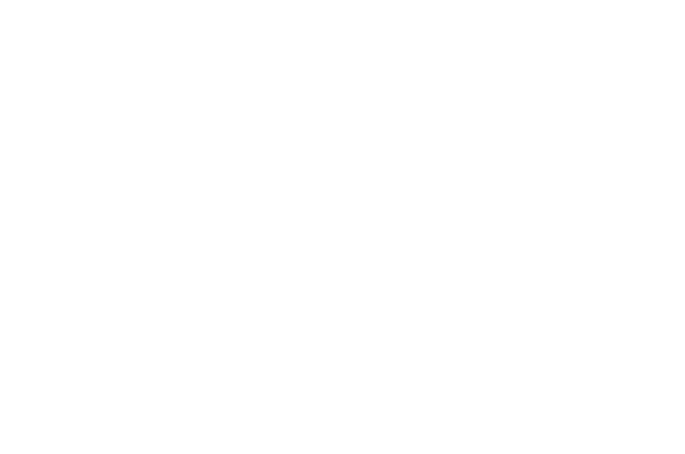 OFFICIAL SELECTION - Cyprus International Film Festival Golden Aphrodite Paphos Pafos - 2018 (1).png
