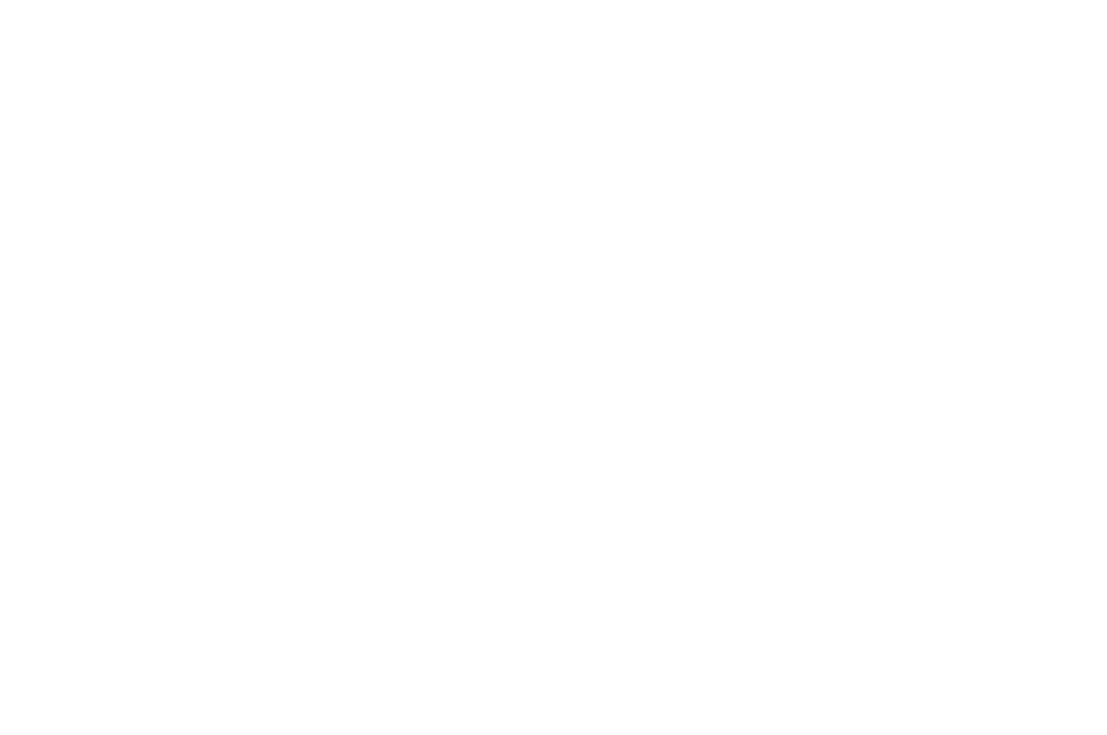OFFICIAL SELECTION - For Films Sake - 2018 (1).png