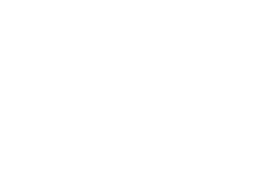 OFFICIAL SELECTION - Mindfield Film Festival  Los Angeles - 2019-2.png