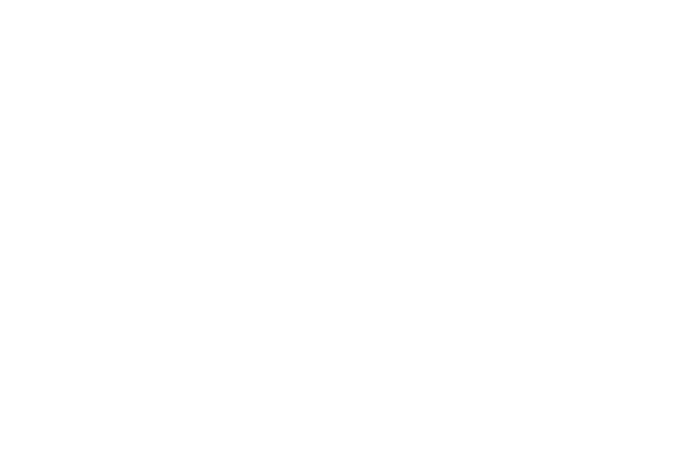 AWARD OF EXCELLENCE - Canada International Film Festival - 2019.png
