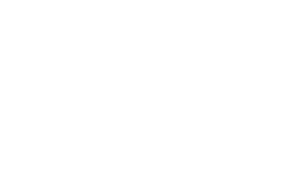 Dream Big Darling is a non profit 501C3 EIN # 82-5420248