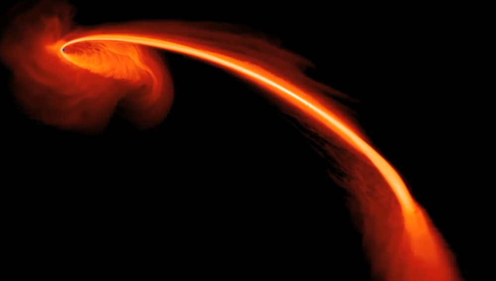 Tidal Disruption Events - What happens when a star gets torn apart by a supermassive black hole?