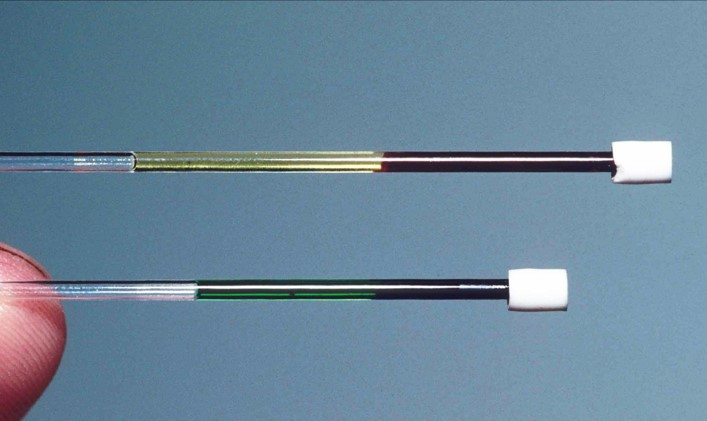 In this image, one tube (top) shows a blood sample from a regular red-blooded lizard from New Guinea ( Lamprolepis smaragdina ). The other tube (bottom) reveals the bright green blood of  Prasinohaema . The bile pigments in this blood is toxic to other species, but  Prasinohaema  handles it just fine. Credit: Chris Austin, LSU.