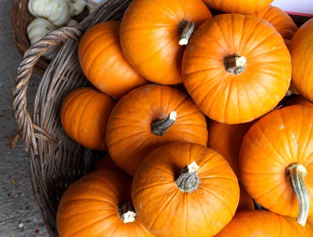 pumpkin-3675534_1920.jpg