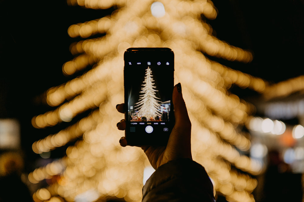 Holiday Tree Lightings - It's time to dig up your jingle bells and festive decor.. the holidays are here! Along with merry times and rosy cheeks, there are amazing holiday parades with floats and boats! The shimmering lights and chances to meet Santa combine to create a magical evening.