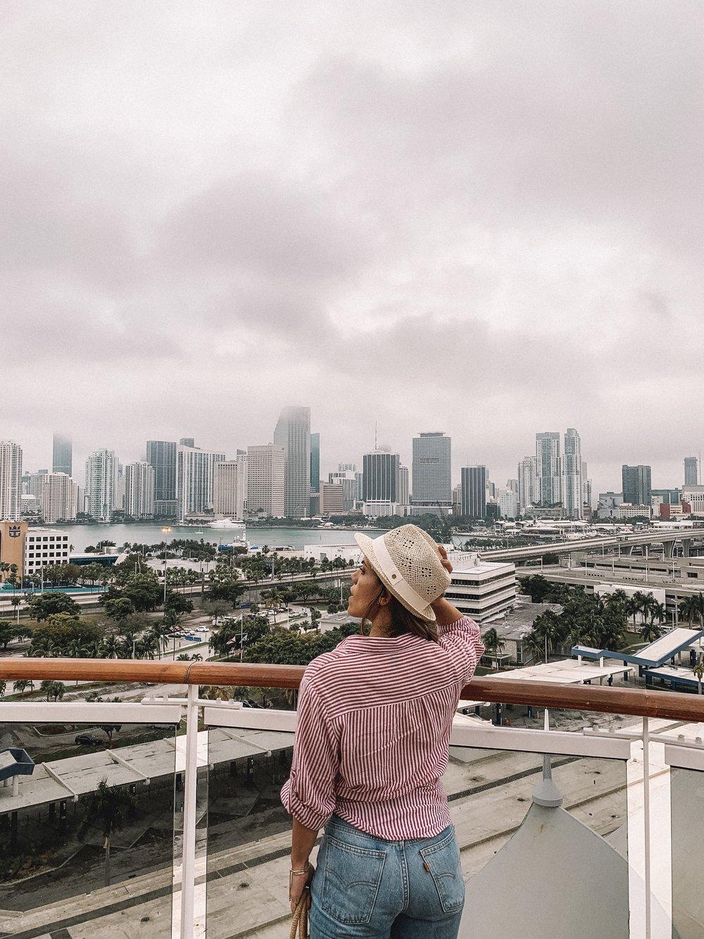 Vista de South Miami