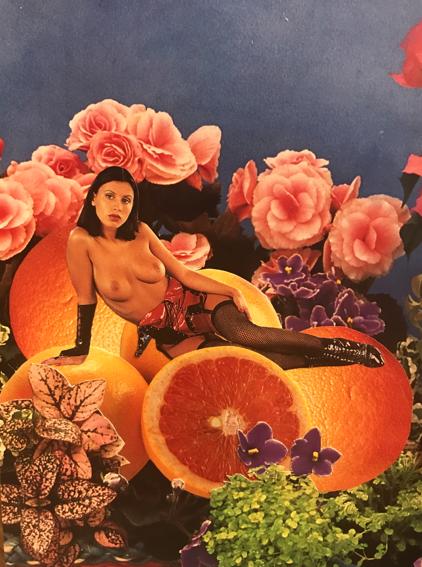 Grape Fru-hooters (1)' 2018,