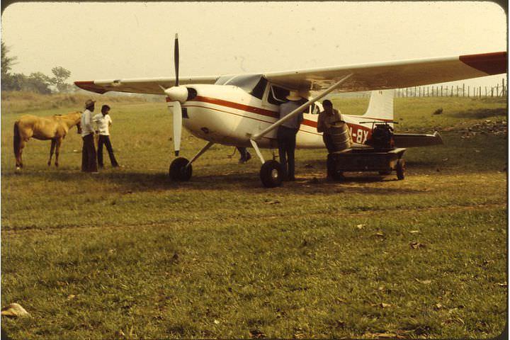 plane greeters