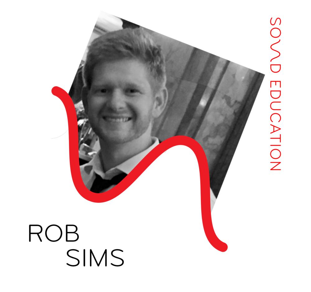 sims_rob.png