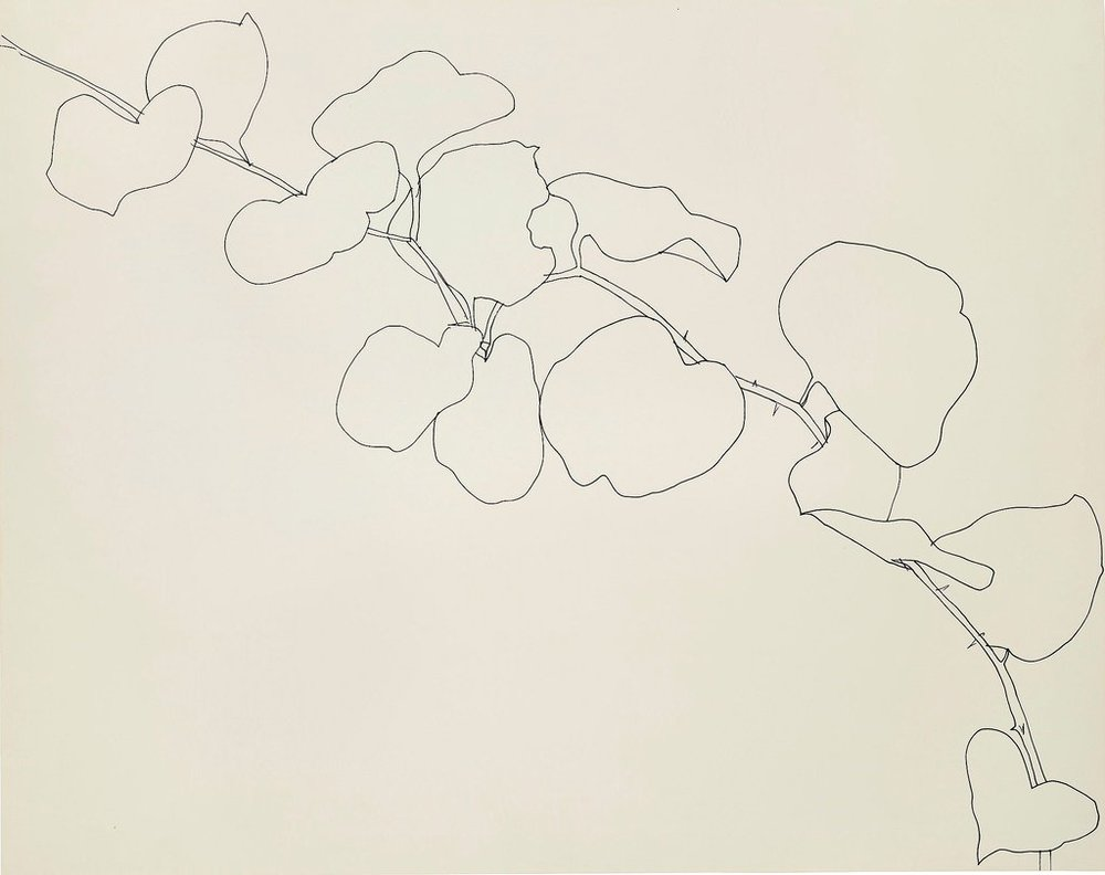 Ellsworth Kelly,Briar  Wadsworth Atheneum Museum of Art, Hartford, 1961