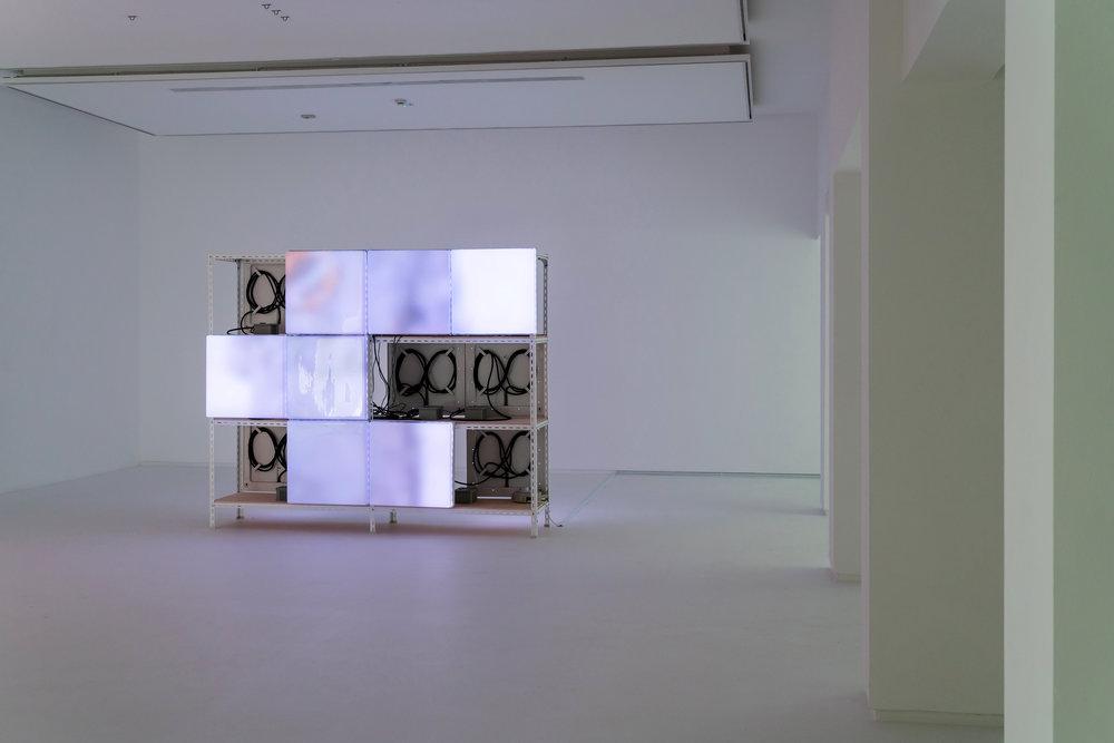 Spectrum (Mahi Mahi) , Jeremy Sharma  2017,  Spectrum Version 2.2  Installation View at Sullivan+Strump  Photography by Sullivan+Strump