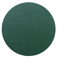 Dark Green.png