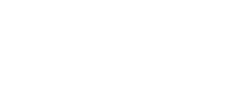 Courage Conference Logo 2018 White.png