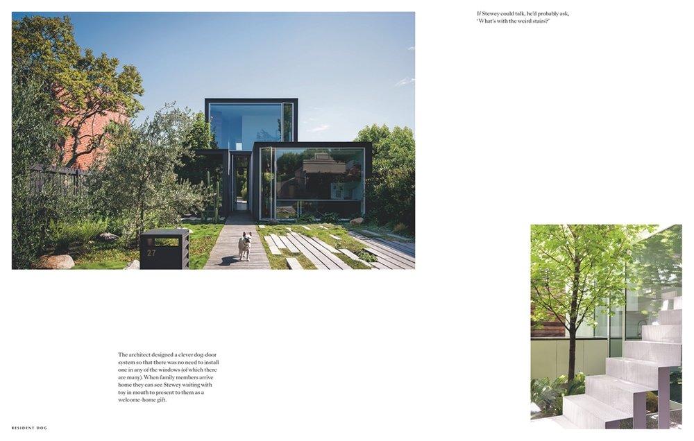 CADABBRA.COM.AU-#66_Happy_Valley_Resident_Dog_Book_4.jpg