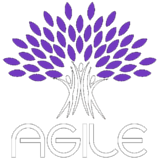 AGILE - Academy of Gameful & Immersive Learning Experiences