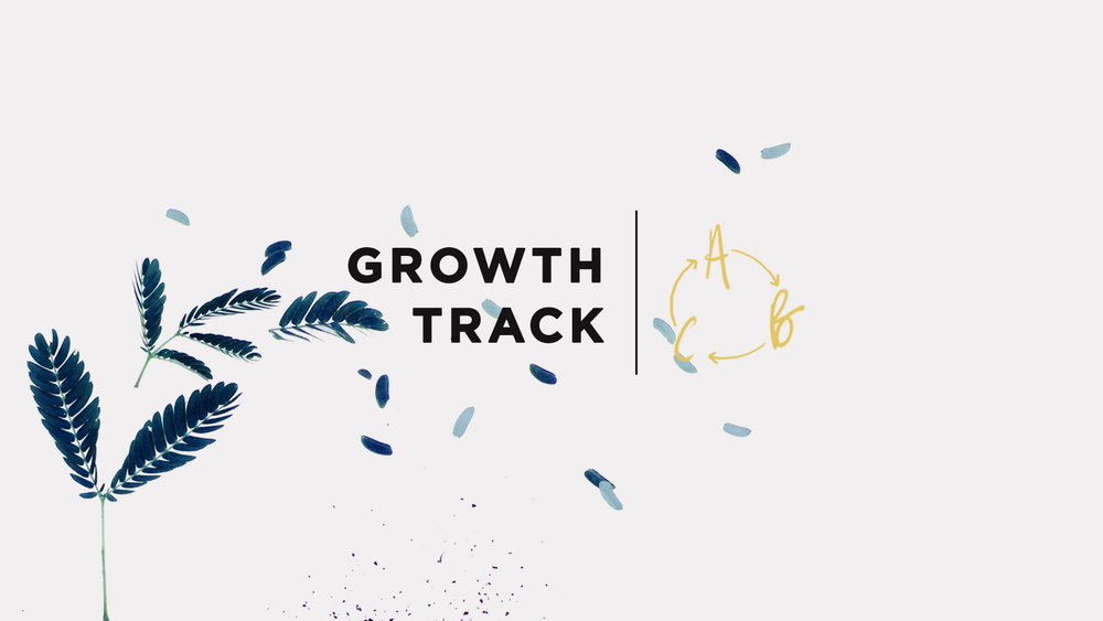 Growth track slide.jpg