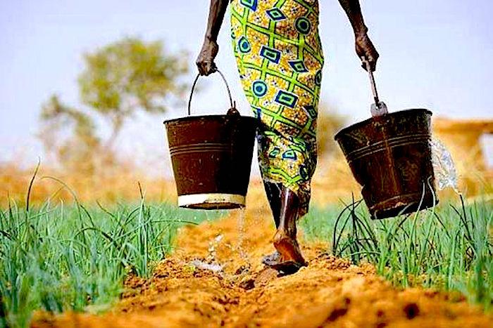 africa-irrigation.jpg
