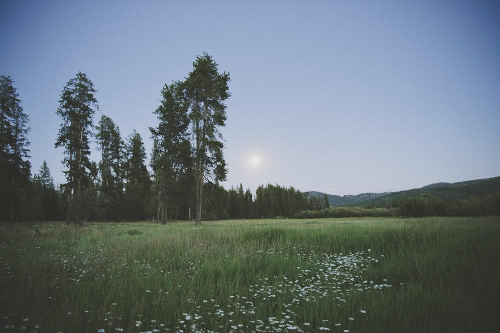 Chloe Hurwitz + Kiefer Martin Wedding_Grey Wolf Ranch_Kelsey Lane Photography2585 copy.jpg