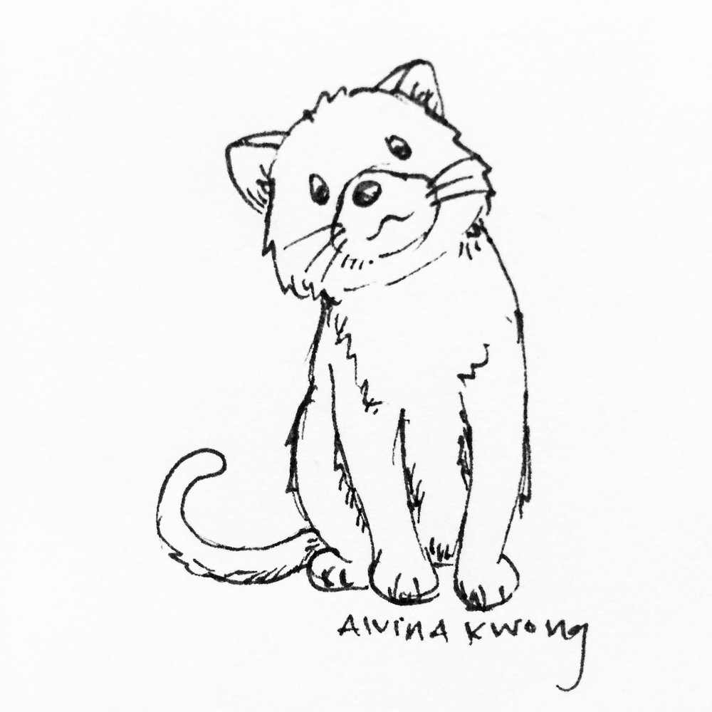 kitty pen sketch.jpg