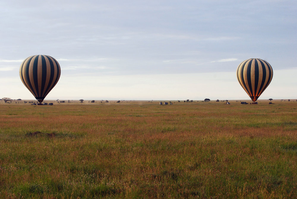 balloon safari enhanced.jpg