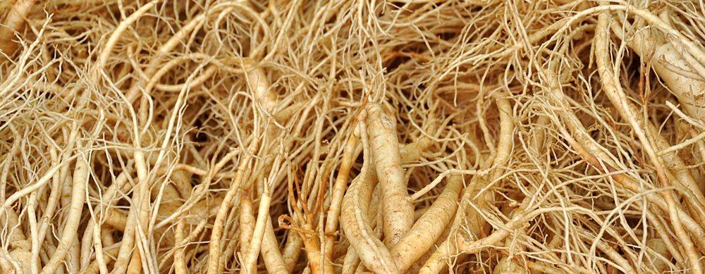 +5M Lbs - expected size of 2018 Ontario Ginseng harvest