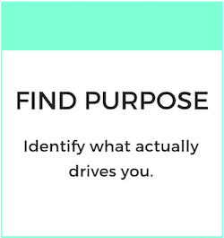 FIND PURPOSE.png