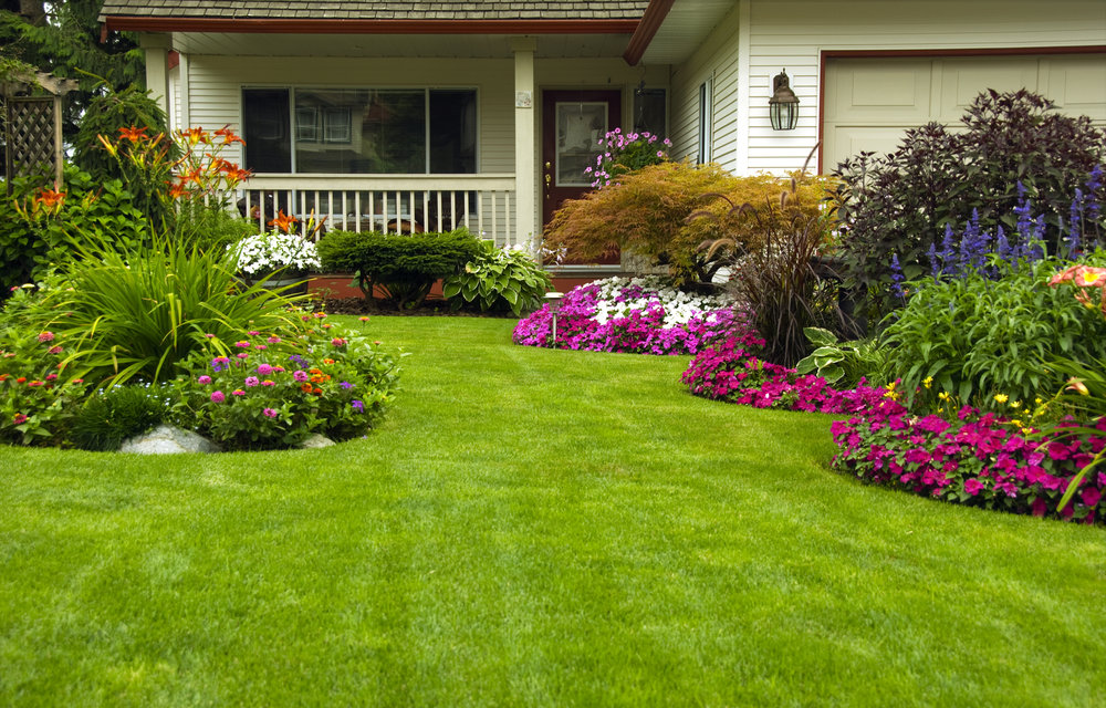 Lawn Care: How to Know Which Services You Need in Wilmette, IL