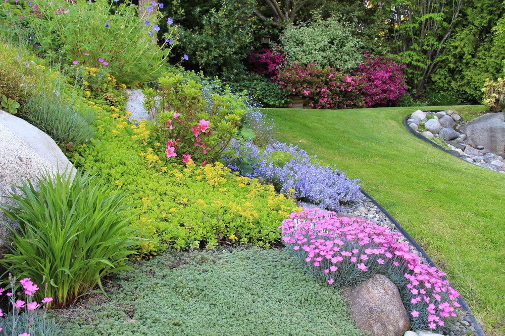 4 Ways Lawn Service Helps to Eliminate Weeds from Your Lawn in Wilmette, IL