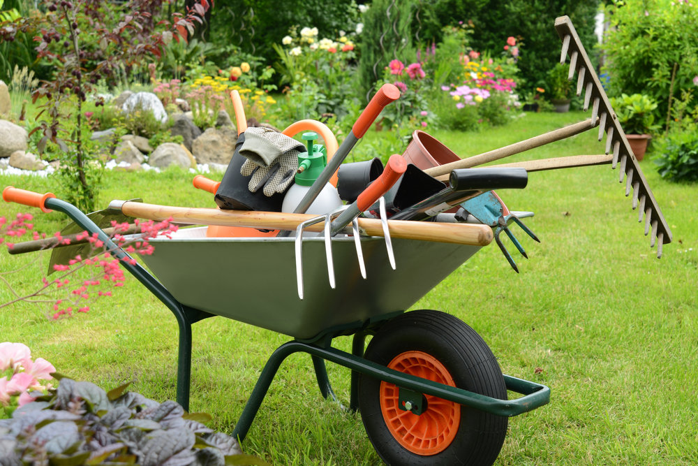 5 Essential Lawn Care Services for the Spring in Highland Park, IL