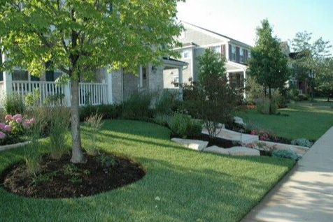 How Landscaping Services Can Help You Get Green, Fertilized Grass in Highland Park, IL