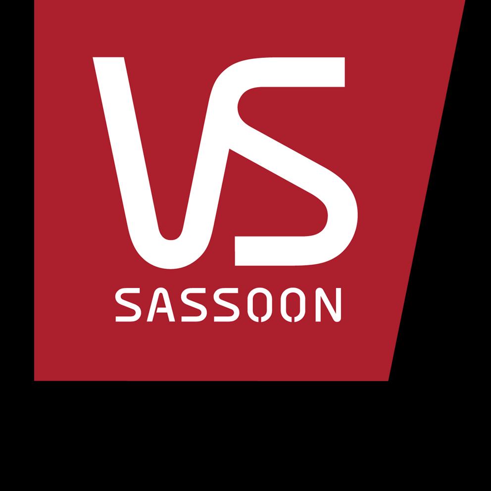 VS Logo.jpg