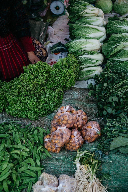 DD_Myanmar_InleLake_Card04-c82.JPG